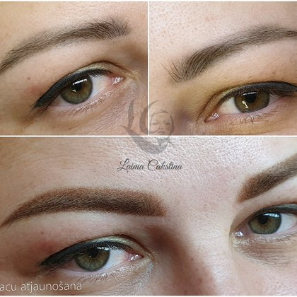 #permanentaisgrims# Healed 3 years ago#brows renovation